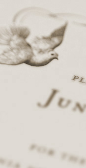Wedding Invitation Detail Image